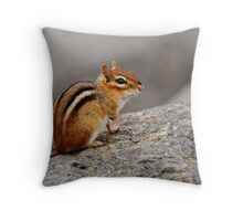 Eastern Chipmunk - Ottawa, Ontario Throw Pillow