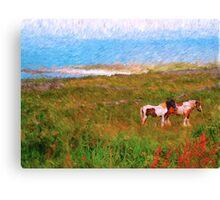 Irish Ponies Canvas Print