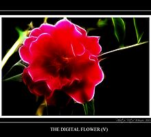 The Digital Flower (V) by vitocork