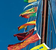 Regatta flags ~ celebration! by Liza Kirwan