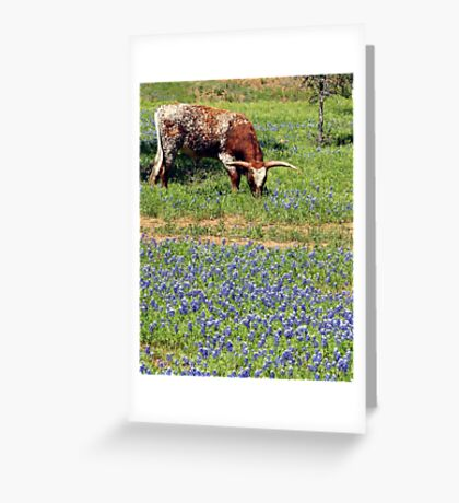 Texas Icons Greeting Card