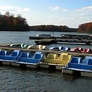 Boats in the Pond, waiting for a turn... by brucecasale