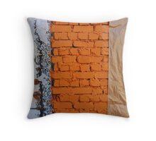 Renovation under wraps Throw Pillow