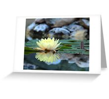 Water Lily Reflection Greeting Card