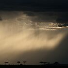 twelve views of kenya by Dan A&#x27;Vard