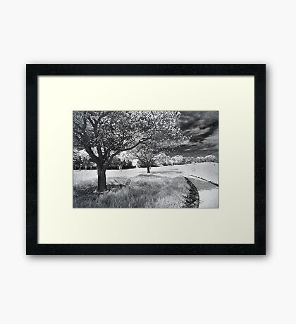 Still the Road Leads Back to You Framed Print