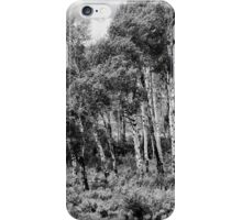 Aspen iPhone Case/Skin