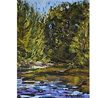 Wilson River 2 - paint out Photographic Print