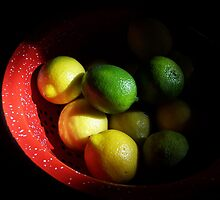Citrus in Red Bowl by Sandra Bauser Digital Art