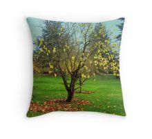 Bodelwydden castle Garden Throw Pillow