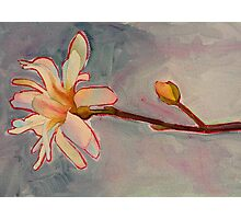 Magnolia, watercolor and mixed media on paper Photographic Print