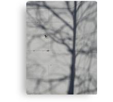 Grey wall Canvas Print