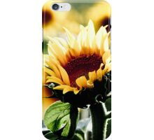 Sunflowers make me smile iPhone Case/Skin