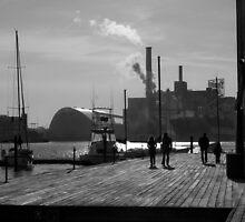 Baltimore Winter Dock Walk by George Herlth III