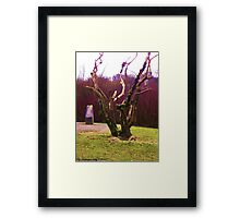 Contorted Limbs Framed Print