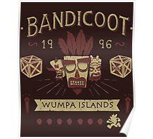 Bandicoot Time Poster