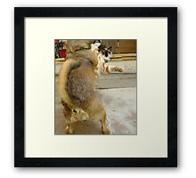 Why you little....... Framed Print