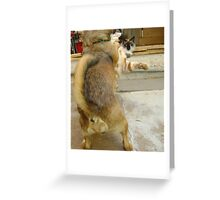 Why you little....... Greeting Card