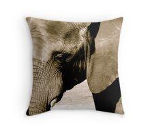 beautiful creatures Throw Pillow