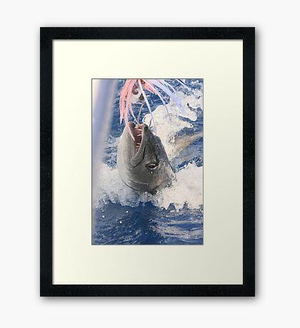 Jaws-Baraccuda Style Framed Print