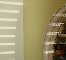 Bookcase shadows by Fizzgig7