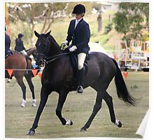 Black horse ready for his class~ Rylestone-Kandos Show 2010 Poster