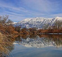 The Bear River by Gene Praag