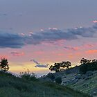 Harcourt Dusk by Harry Oldmeadow