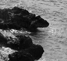 Cracked Conch Bay, Northwest Coastline, Grand Cayman by Geetha Alagirisamy