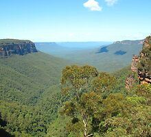 Jamison Valley and Mt Solitary, Blue Mountains by Michael Vickery