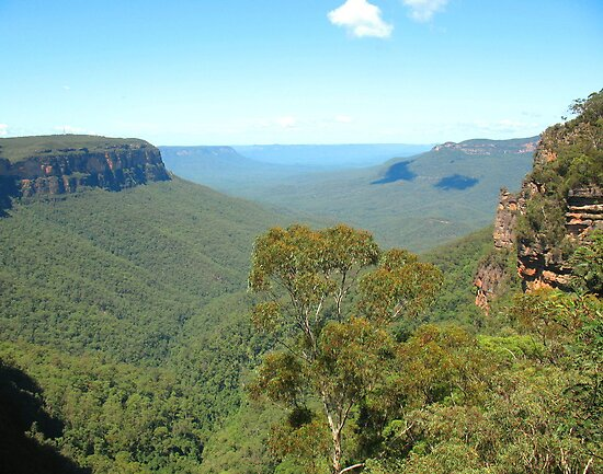 Jamison Valley and Mt Solitary, Blue Mountains by Michael John