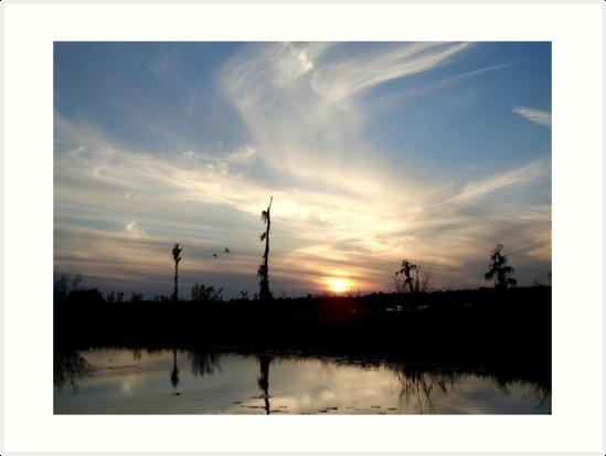 Sunset with Ducks by May Lattanzio