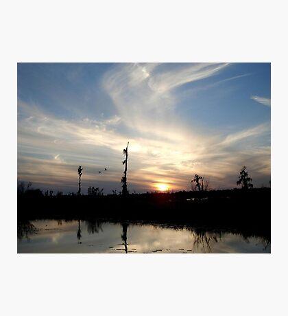 Sunset with Ducks Photographic Print