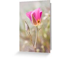Sego Lily 3 Greeting Card