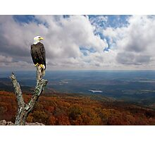 Land of the Free; Home of the Brave Photographic Print