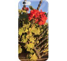 Passion burst iPhone Case/Skin