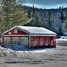 Highland Lake in Winter by Monica M. Scanlan