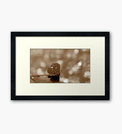 """""""Diamonds on the outside"""" Framed Print"""