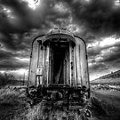 Junkyard Train by Bob Larson