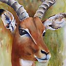 Impala&#x27;s Soul by Debbie Schiff