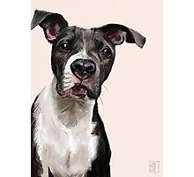 Loyalty. Dog Illustration Pet Photographic Print