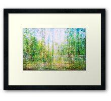 Average Forest  Framed Print