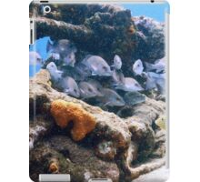 Reef Fish on a Shipwreck, Bahamas Sea iPad Case/Skin