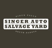Singer Auto Salvage Yard by Lee Jones