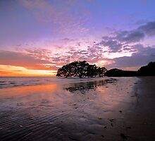 In Dulci Jubilo - Nudgee Beach by GeoffSporne