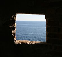 Window to the world by erwina