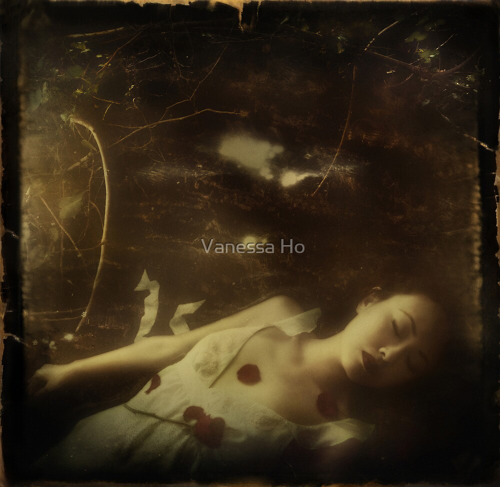 The third day by Vanessa Ho