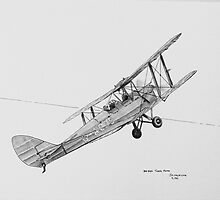 DH-82A Tiger  Moth G-ACDC by Jack Froelich