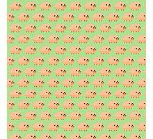 Pixel Pigs Pattern Photographic Print