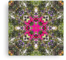 Pirates of the Pansies Canvas Print